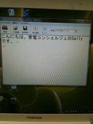 amivoice1.JPG