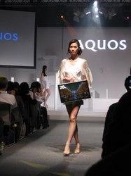 aquos_1.jpg
