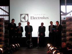 electrolux_100_3.jpg