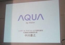 haier_1.jpg