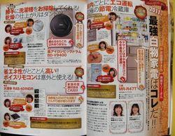 kadenhihyo_201201_1.jpg