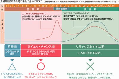 kenko_img03.jpg