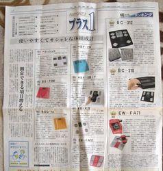nikkei_20120211.jpg