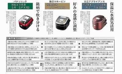 nikkei_20130815_2.jpg