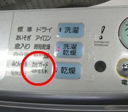 sanyo_clean_3.jpg