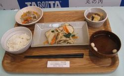 tanita_lunchbox_5.JPG